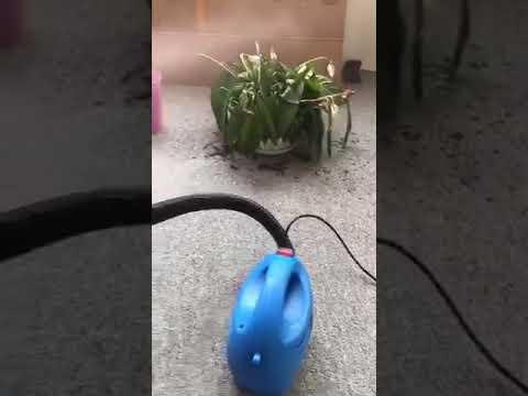 Transair Portable Sanitizer Fogger Sprayer
