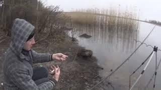 Универсальный фидер на реке в марте