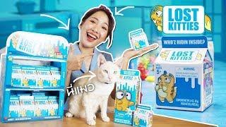 ซอฟรีวิว ลูกแมวน้อยเซอร์ไพรส์! ต้องขุดหาลูกแมวที่ซ่อนอยู่!?【Hasbro Lost Kitties】 - dooclip.me