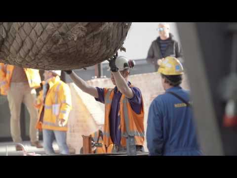 Realisatie Maanplein Heerlen Nationale Bomenbank