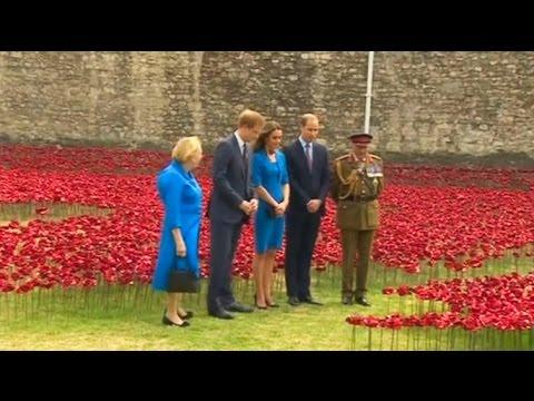Принц Уильям, его жена Кэтрин и брат Гарри «посадили» красные маки у стен Тауэра (новости)