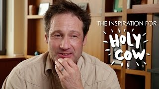 David Duchovny  HOLY COW The Inspiration For The Book