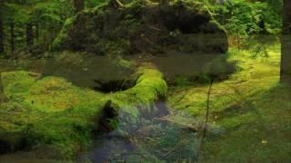 Descansa en El   Musica instrumental cristiana, musica de sanidad
