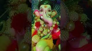 Ganpati chaturthi Status | Ganesh chaturthi Status | Bal ganesha | Home Ganesha video
