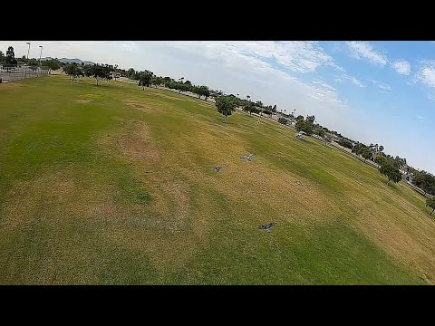 Geprc Rocket Plus DJI Air Unit - (Remix)FPV 120fps Slow Motion Bird Chasin Large Park