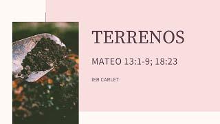 IEB Carlet (Valencia)