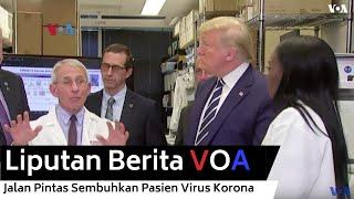 Jalan Pintas Sembuhkan Pasien Virus Korona