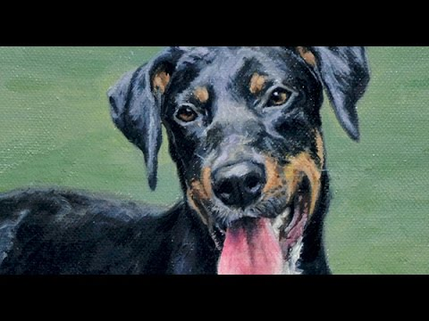 Dog Portrait, Oil Painting Of Shelby, Time-lapse, Speed-painting