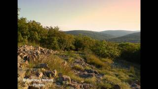 Chris Tomlin - You Do All Things Well (Nature Slideshow)