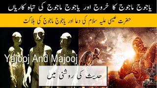 Yajooj Majooj Ki Tabah Karyan Or Yajooj Majooj Ki Halaqat | Awraaq Islamic TV