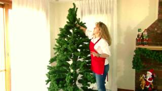 How to set up your Christmas Tree