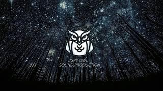 OWL SPY   Not Your Dope   Indestructible (ft. MAX) (Jyye Remix)