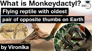 What is Monkeydactyl? Flying reptile with oldest pair of thumbs - Environment Current Affairs