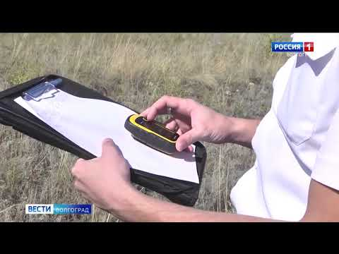 Управлением Россельхознадзора проводится контроль исполнения предписаний об устранении выявленных земельных нарушений в Волгоградской области