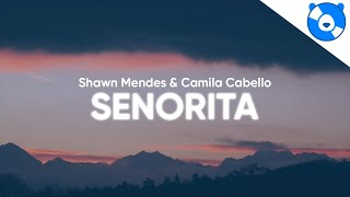 Shawn Mendes, Camila Cabello   Señorita (Clean   Lyrics)