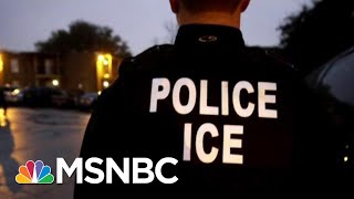 Why Were President Donald Trump's Mass Immigrant Raids Postponed? | Velshi & Ruhle | MSNBC