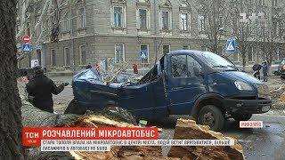 В середмісті Миколаєва стара тополя впала на мікроавтобус