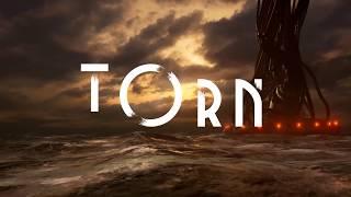 VideoImage1 Torn