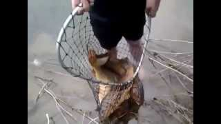 Рыбалка в морозовске ростовской области на