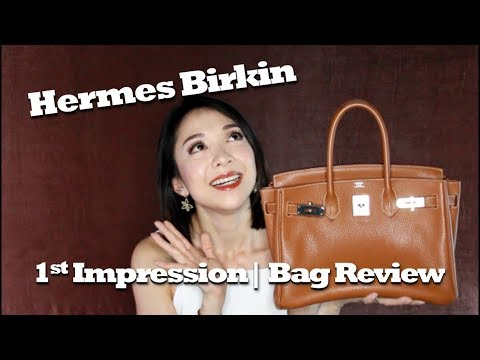Hermes Birkin | Bag Review | 1st Impression | Kat L