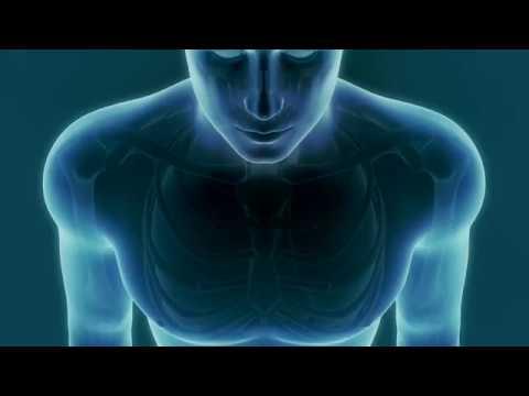 Rapport de lhypertension sur la biologie de la page 2