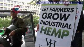 Hemp Hemp Hooray?