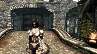Skyrim Imperial Crusader Set из Lineage 2