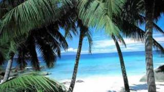 Hawaiian Christmas Song (Mele Kalikimaka) - Bing Crosby