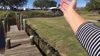 🔴 Через ГОЛОДНЫХ КРОКОДИЛОВ 🔴 Едем на запуск ракеты ИЛОНА МАСКА  Florida 5.12.2018