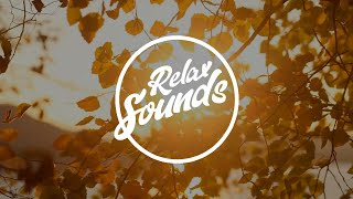 Шум осенней листвы | Звуки природы | Расслабляющая музыка | Звуки релакса / Relax Sounds