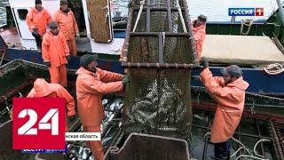 На Курильских островах в самом разгаре лососевая путина - Россия 24
