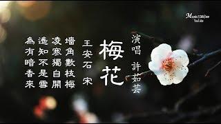 許茹芸 《梅花》墻角數枝梅 淩寒獨自開 ...(詩詞:王安石• 宋)♥ ♪♫*•