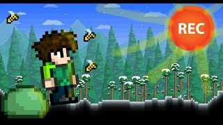 Early Morning Terraria Gameplay Live stream| Terraria Let's Play Number 12