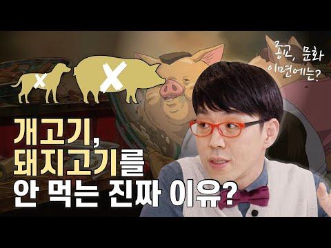 왜 개고기와 돼지고기가 금기로 여겨지는가??