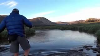 Fly-Fishing Utah's Small Mountain Streams