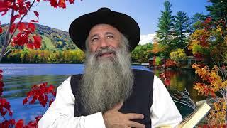 N°411 Noah | Rabbi Nahman de breslev - Thora et Emouna