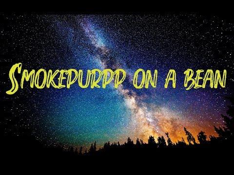 Lil Peep feat Smokepurpp - Smokepurpp on a Bean (Lyrics Video)