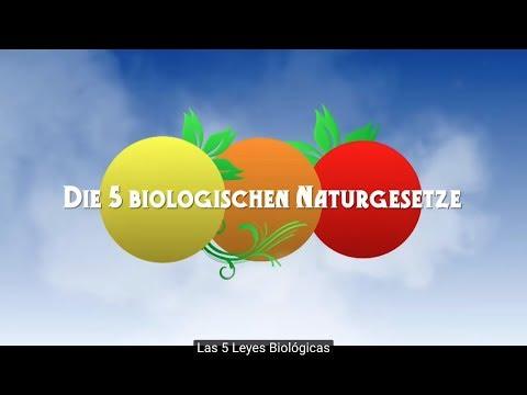 Las 5 Leyes Biológicas - Documental 5LB  (español)
