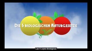 Gambar cover Las 5 Leyes Biológicas - Documental 5LB  (español)
