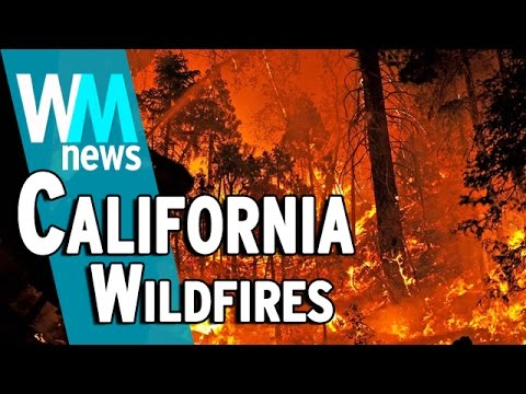 10 California Wildfire Facts – WMNews Ep. 46