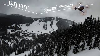 Blizzard Buzzing with the DJI FPV