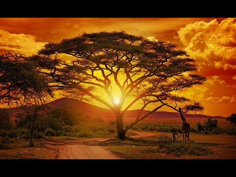AFRICA REGGAE GOSPEL MUSIC (NIGERIA / AFRICA MUSIC)