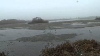Озеро киово лобня рыбалка
