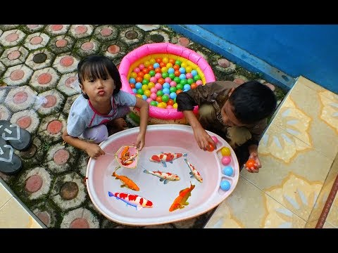 Tangkap ikan dan bola warna warni mandi bola - Mainan anak - Catch the fish and bathe the ball
