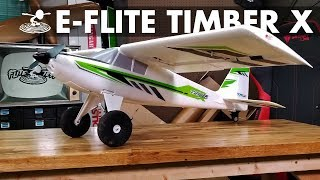 Not your Standard Bush Plane | E-flite Timber X