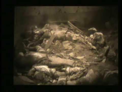 動画 旧日本軍の「慰安婦虐殺」の現場映像、韓国で初公開  赤かぶ