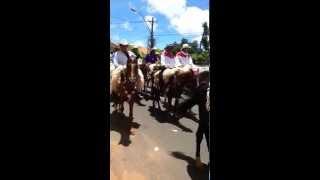preview picture of video '9na Peregrinación a caballo a Caacupe'