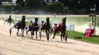 Kasaške dirke v Ljutomeru - Memorial Mirka Hanžekoviča