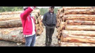 Uttama Villain - Loveaa Loveaa Making Video | Kamal Haasan, Ghibran