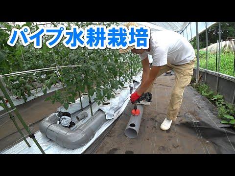 , title : '【水耕栽培】パイプ水耕のすすめ  ミニトマト / pipe Hydroponics